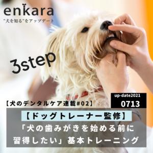 【犬のデンタルケア連載】ドッグトレーナー監修「犬の歯みがきを始める前に習得したい」基本トレーニング(3ステップ編)